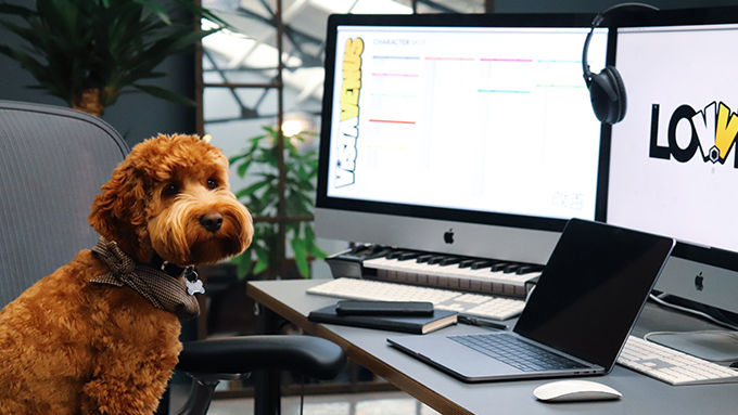Dog with Computers