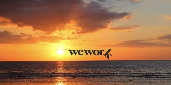 We work logo and sunset