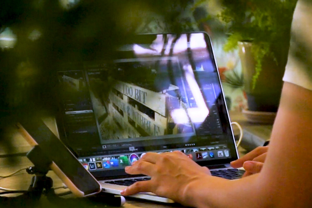 A person working on a laptop at a table with a plant at the front of the shot